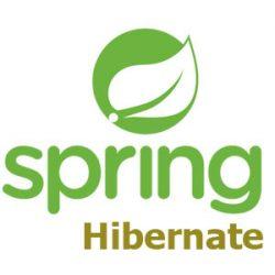 spring hibernate logo