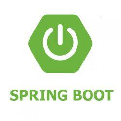 spring boot logo