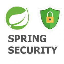 SPRING MVC SECURITY LOGO