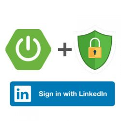 spring boot security linkedin