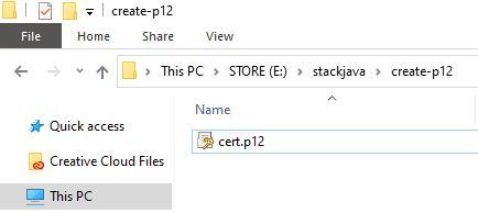 Tạo certificate SSL cho server Java (PKCS #12 - p12, pfx)